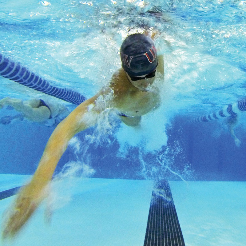 adult-swimming-1